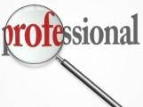 professional-2